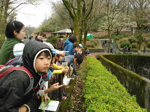 ビーバー隊の多摩動物公園で学習活動